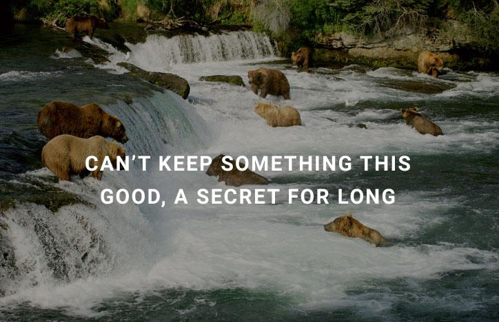 no-secret-NO-MORE.jpg