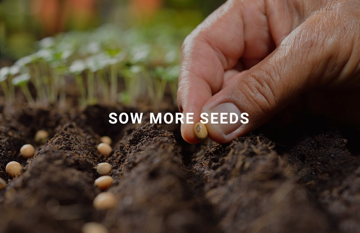 sow-more-seeds
