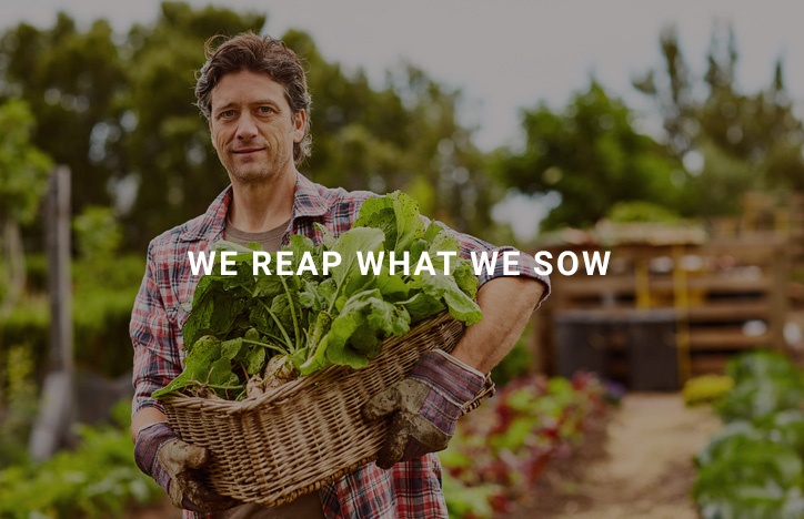 we-reap-what-we-sow